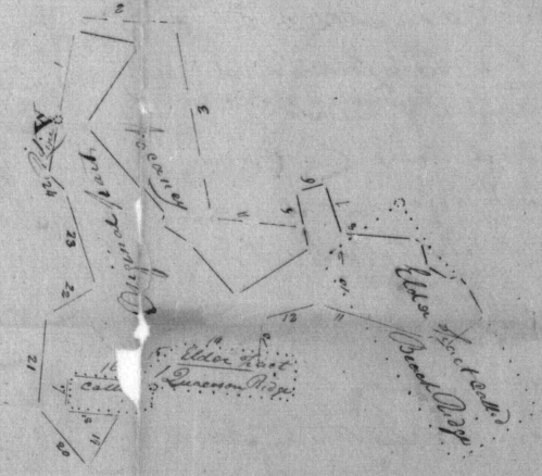 West Level, patented to James Whaley in 1850, incorporated elder tracts Spears Venture, Addition to Spears Venture, and portions of Quaacoson Ridge and Beach Ridge.